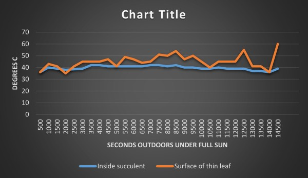 Here is an experiment conducted on a hot sunny day Nov. 3 2015. he vertical axis hsows degrees (centigrade). The horizontal axis shows time, spanning roughly 4 hours. he orange line shows he temperatures at the surface of a regular flat leaf. he blue lines shows the temperatures at the same time and place on the inside of a succulent (Aloe) leaf. It stayed mores stable and mostly cooler