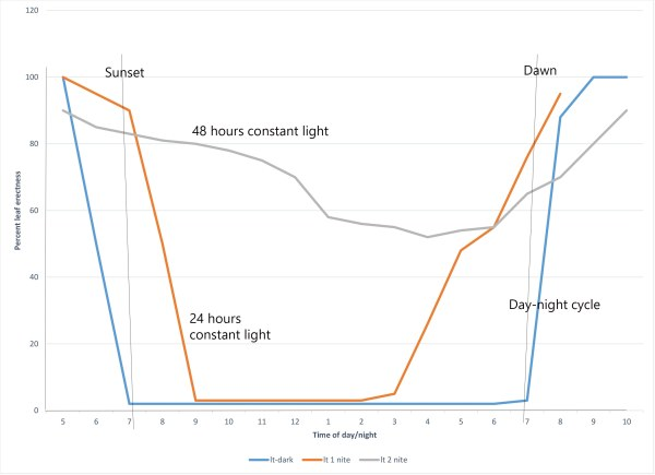 Desmodium light response chart