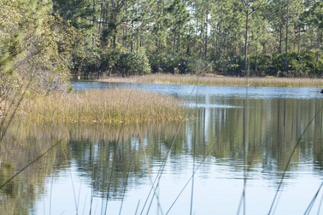 Halpatioke lake